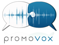 PromoVox Payment